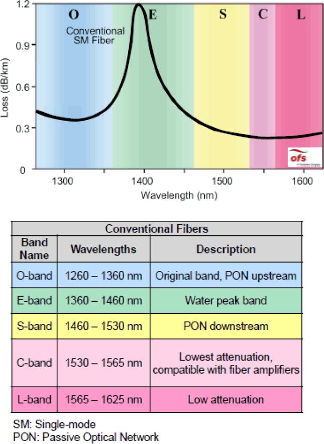 NG-WDM | Textos Científicos